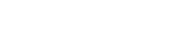 south-florida-banking-institute_logo